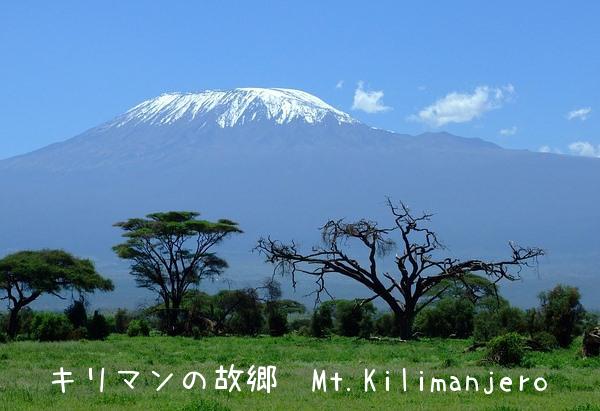 キリマンの故郷 Mt.Kilimanjero