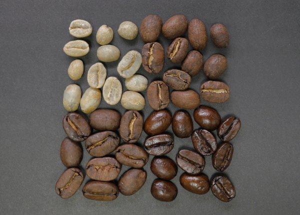 珈琲の生豆と焙煎度の違う豆
